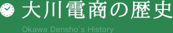 大川電商の歴史